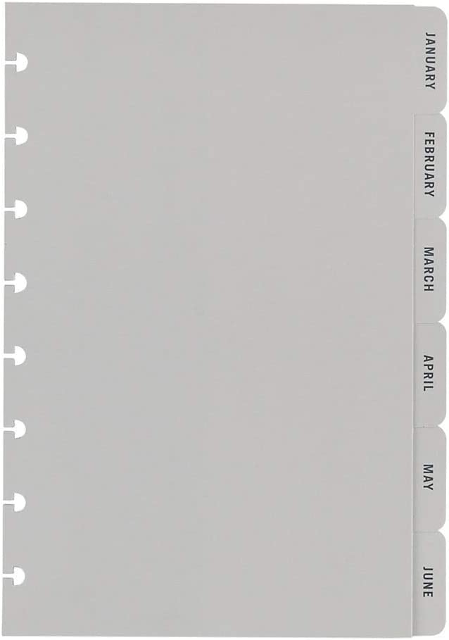 TUL Discbound Monthly Tab Dividers, Junior Size, Gray, January to December, Pack of 12 Dividers