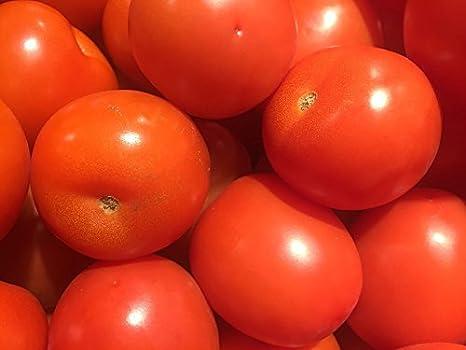 """Tomate """"Apis"""" - variedad de campo con fruta redonda ..."""
