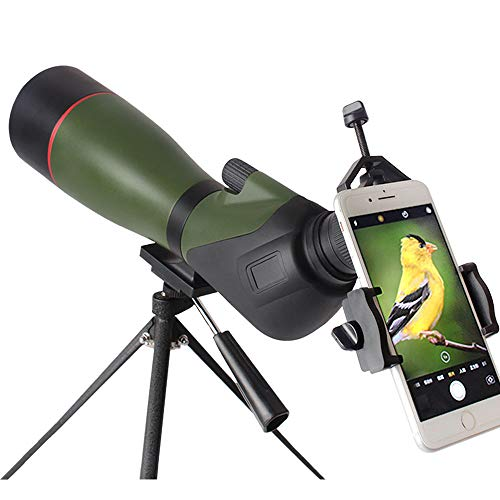 DTF 20-60x80 Spotting Scope with Tripod, Waterproof Spotter Scope for Target Shooting, Birding Scopes with 45 Degree Angled Eyepiece, Carrying Case and Phone Adapter Included