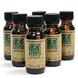 StealStreet SS-A-30056 Fragrance Oil for Aroma Burner, Jasmine, 6-Bottle
