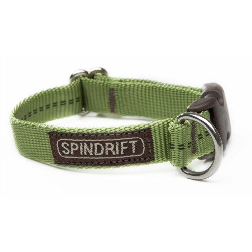 "Spindrift 223 Standard Dog Collar - Small (3/4"" x 11-15""), Orange"