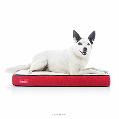 Brindle Orthopedic Memory Foam Pet Bed - Red Sherpa - Medium 34 x 22