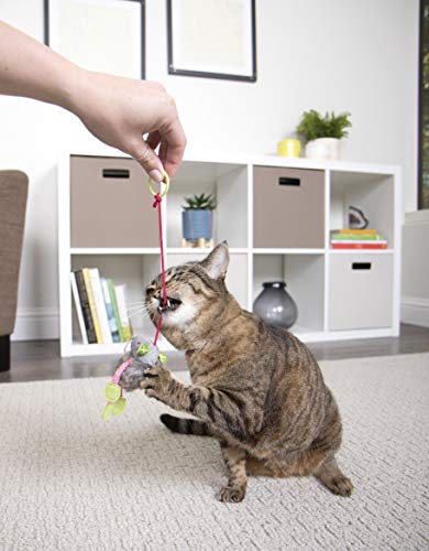 SmartyKat Interactive and Wand Cat Toys 9