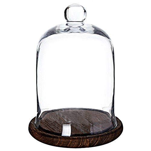 (MyGift Clear Glass Jar, Cloche Dome Display Centerpiece with Brown Wood Base)