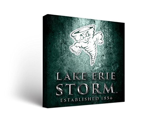 Victory Tailgate Lake Erie College Storm Canvas Wall Art Museum Design (24x36) by Victory Tailgate