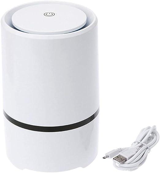 YSCCSY Mini Refrigerador Aire Ozonizador Ozono Ionizador Generador ...