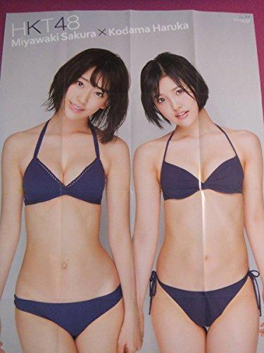 H2433/特大アイドルポスター/『宮脇咲良・兒玉遥(HKT48)』/水着