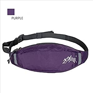 Mayshion AONIJIE Unisex Water Resistance Nylon Outdoor Sports Waist Pack for Running Cycling Jogging (Purple)