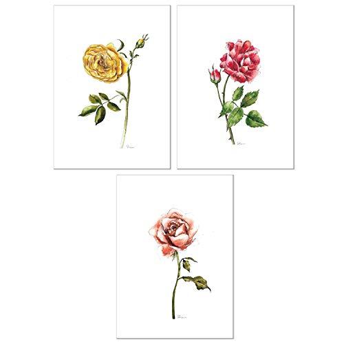 (Todo Bien Design Inc Home Wall Decor Watercolor Botanical Prints - (Set of 3) - Unframed (5x7 Rose-1))