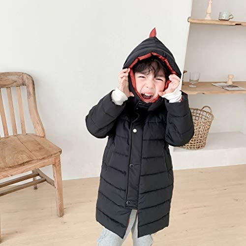 Shan-S Boys Waistcoat Outwear,Toddler Kids Baby Boy Sleeveless Autumn Winter Hooded Jacket Warm Thick Coat Outwear Lightweight Adorable Cartoon Dog Zipper Windproof Coats Tops