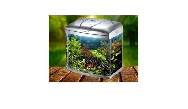 Pecera pequeña, para peces tropicales y de agua fría, con luz LED, para principientes: Amazon.es: Productos para mascotas