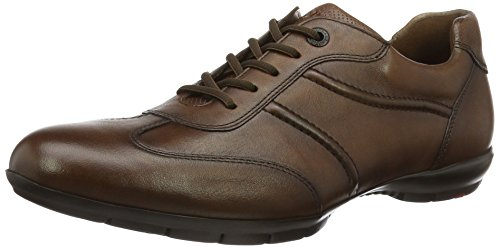 Homme Basses Marron Sneakers Armin Lloyd Cognac gwqEtC
