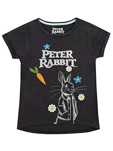 Peter Rabbit Girls' Beatrix Potter T-Shirt Size 4 Gray