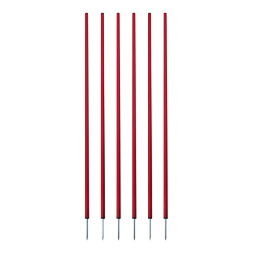(Champion Sports Coaching Sticks, Red)
