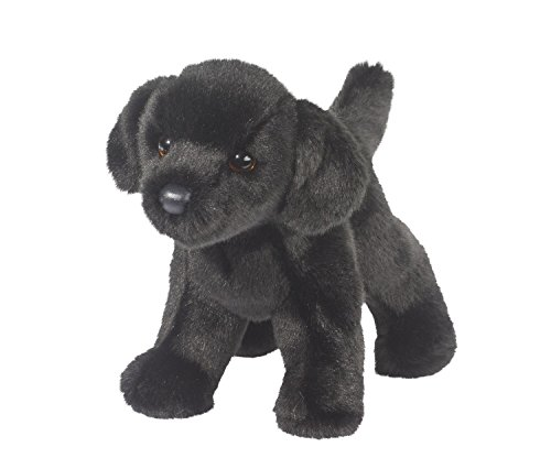 Bear Black Lab 10