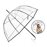 Rainbrace Clear Umbrella Big Arc 52
