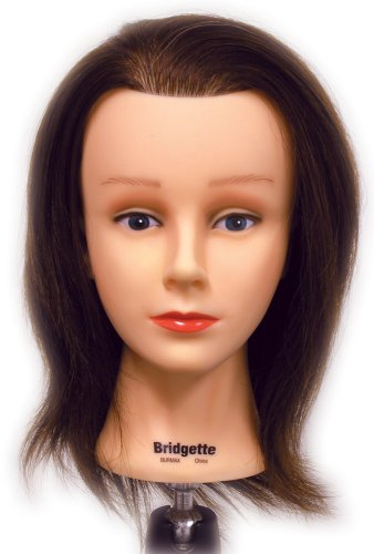 Celebrity Bridgette Budget Cosmetology Human Hair Manikin, 16-17 Inch
