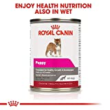 Royal Canin Giant Puppy Dry Dog Food, 30
