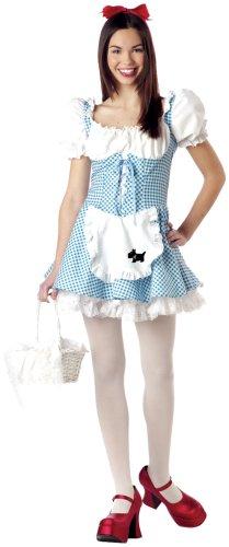 California Costumes Girls  Tween-Storybook Sweetheart, Blue/White, 3-5 (Tween Of Hearts Costumes)