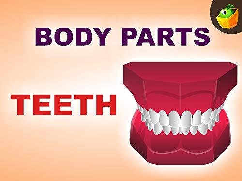 Teeth ()
