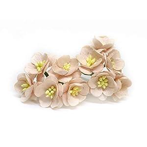 "1"" Blush Pink Cherry Blossom Flower Artificial Flowers Paper Flowers Synthetic Flowers Fake Flowers Paper Craft Flowers Mulberry Paper Flowers Wedding, 25 Pieces 40"