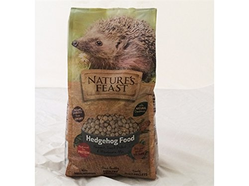 Natures Feast Hedgehog Food 675g 2600107 Westland
