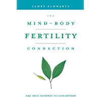 The Mind-Body Fertility Connection: The True Pathway to Conception
