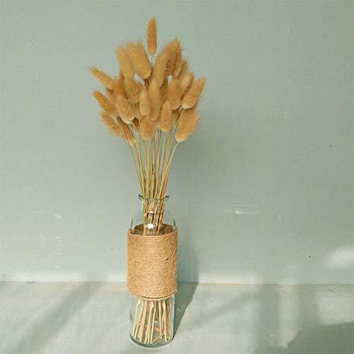 50-Pcs-Natural-Dried-Small-Pampas-Grass-Phragmites-Communis-Foxtail-Grass-Rabbit-Dog-Tail-Grass-Dry-Bouquet-Wedding-Flower-Bunch-14-17-Tall-Home-Dcor