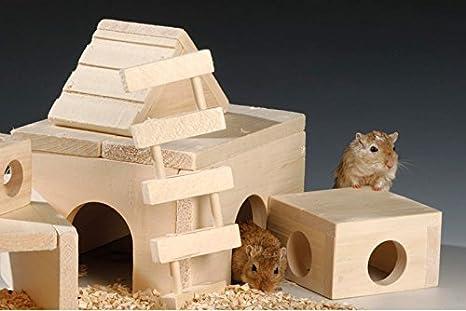 dutscher 372028 escalera para roedores, 75 x 20 x 208 mm (Pack de 40): Amazon.es: Industria, empresas y ciencia