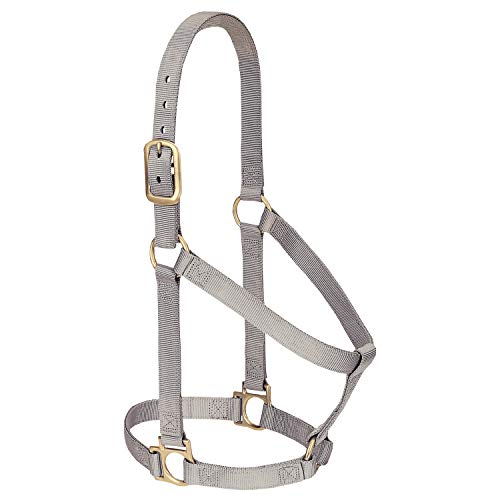 Leather Plain Basic - Weaver Leather Basic Non-Adjustable Halter, 1