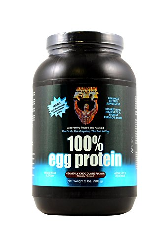Healthy 'n Fit 100% Egg Protein, Heavenly Chocolate,  2 lbsTub