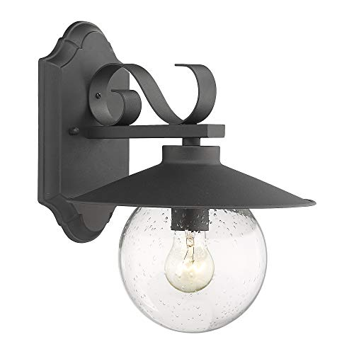 Emliviar Outdoor Wall Sconce, 1-Light Exterior Wall Light with Globe Seeded Glass Shade in Black Finish, 20067B1