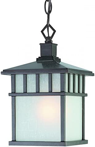 Dolan Designs 9113-34 1Lt Olde World Iron Barton 1 Hanging Light