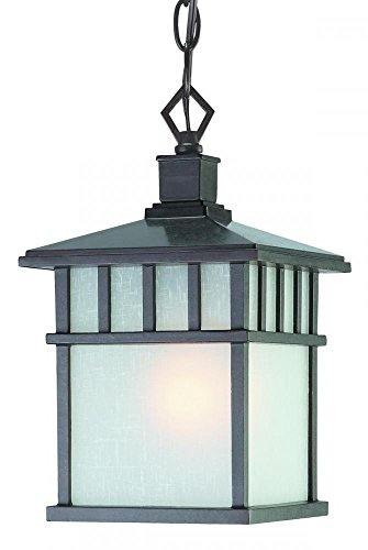 Dolan Designs 9113-34 1Lt Olde World Iron Barton 1 Hanging Light