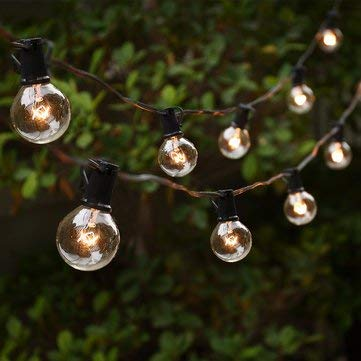 Led Globe String Lights - Outdoor Globe String Lights - 25ft String with G40 E12 Globe Clear Bulb for Backyard Patio Christmas Decor - 110V US Plug (Clear Globe String Lights) ()