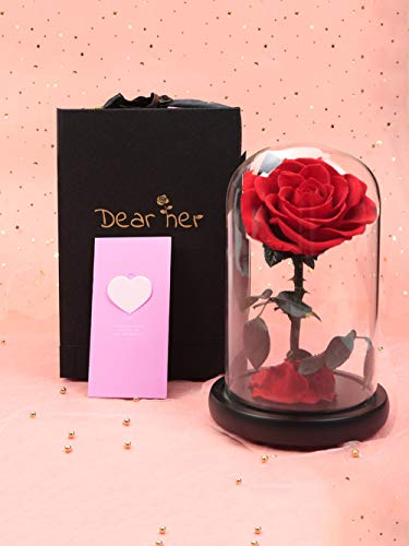 Dear her Beauty and The Beast rose Handmade Preserved Flowers Forever Roses in Glass Dome Gift Box Best Gift for Her, Anniversary Valentine Birthday Wedding, for Girls Wife Mother Lover