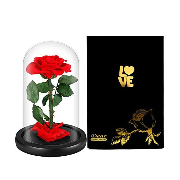 LOVLO Eternal Rose – Handmade Real Rose Preserved Flower with Beautiful Glass Dome ,Romantic Gift for Valentine's Day, Anniversary,Birthday,Mother Day, Christmas