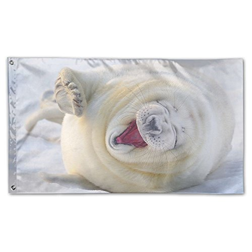 Colby Keats White Animals Garden Lawn Flags Indoor Outdoor Decoration Home Banner Polyester Sports Fan Flags 3 X 5 Foot