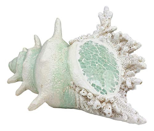 (Ebros Large Ocean Sea Shell Conch Statue with Mosaic Crushed Glass 6.5