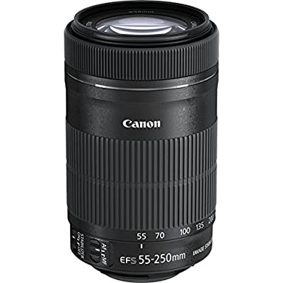 canon-ef-s-55-250mm-f-4-56-is-stm