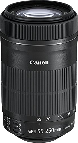 Canon EF-S 55-250mm f/4-5.6 IS STM Telephoto Zoom Lens International Version