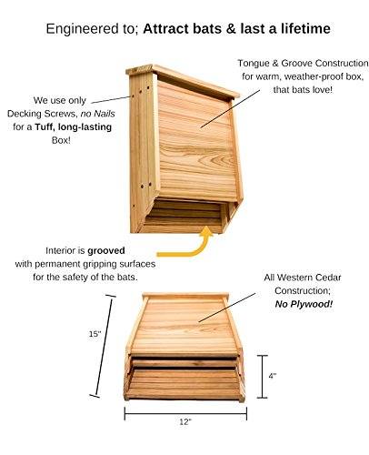 Big Bat Box 2-Chamber Cedar Bat House (Brown) by Big Bat Box (Image #2)