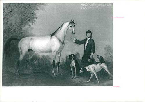 Vintage photo of Peter Tillemans, horse with groom and hounds
