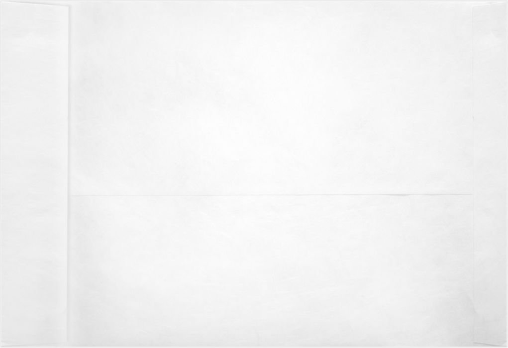 9 x 12 Open End Envelopes - 11lb. Tyvek (50 Qty) | Perfect for mailing Documents, Catalogs, Direct Mail, Promotional Material, Brochures and More | PC1102PL-50
