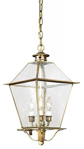 Troy Lighting Montgomery 3-Light Outdoor Pendant - Natural Aged Brass Finish with Clear Seeded Glass