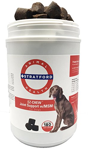 Stratford Pharmaceuticals EZ-Chew Max Strength Joint Support with MSM Dogs - 180 Soft Chews