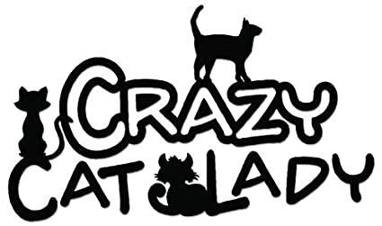 car pet decal Crazy Cat Lady Decal Crazy Pet Lady Vehicle Stickers window decal Car decal Crazy Dog Lady Decal car sticker