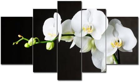 Top imagen sobre lienzo 5 imágenes Número de Referencia m51318 White Flower moderna imágenes enmarcado sobre auténtico bastidor. Enmarcado como imagen sobre Marco. Menos Que Pintura al óleo Póster Cartel con marco