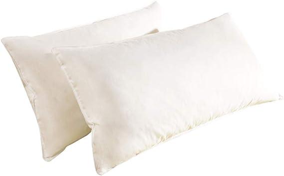 NATURALEX MEMORY FOAM Pillow VFl3TY