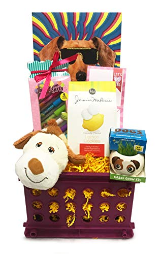 Snack Gift Basket for Girl - Teen, Tween, Preteen, Girlfriend, Young Woman - Perfect for Birthdays, Get Well, Thinking of You, Christmas (Dog Lover #1)